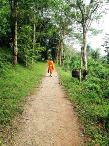 Novice monk on path to Mt. Phousi