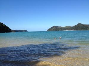 Swimming at Apple Tree Bay