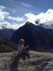 Summit Track in Fiordland