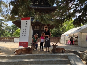 First deer sighting in front of the five story pagoda.