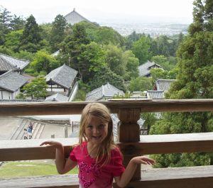 View above Nara